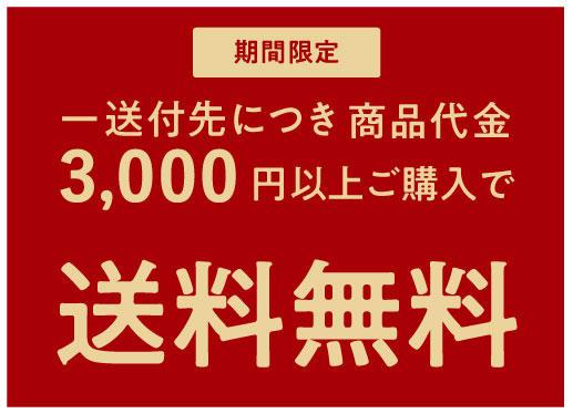 3,000円以上 送料無料!